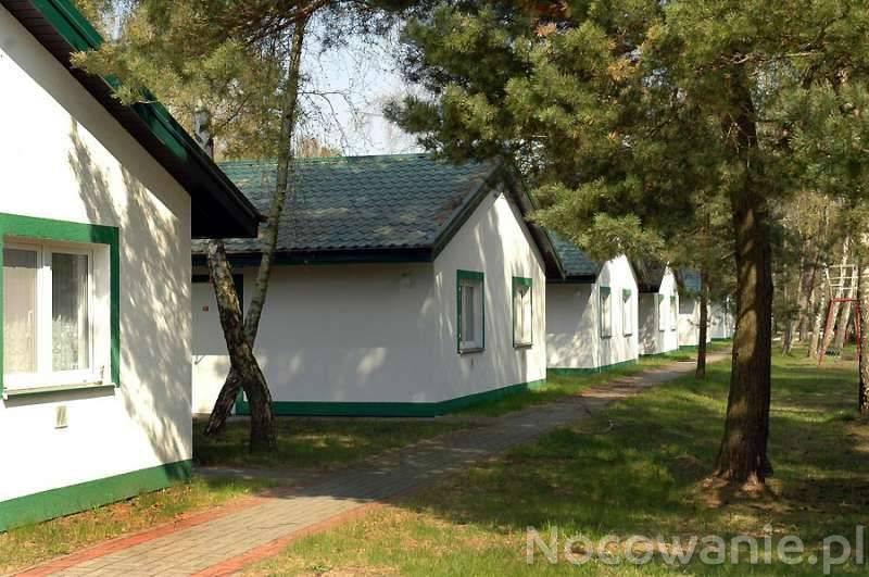Chorwacja vodice domy last minute francja