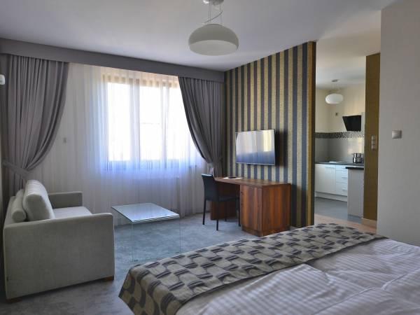 Aparthotel miodowa krak w aparthotel miodowa w krakowie for Appart hotel 45