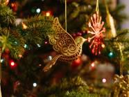 5 mało znanych faktów o Bożym Narodzeniu