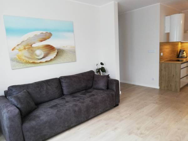Apartament Laguna - salon