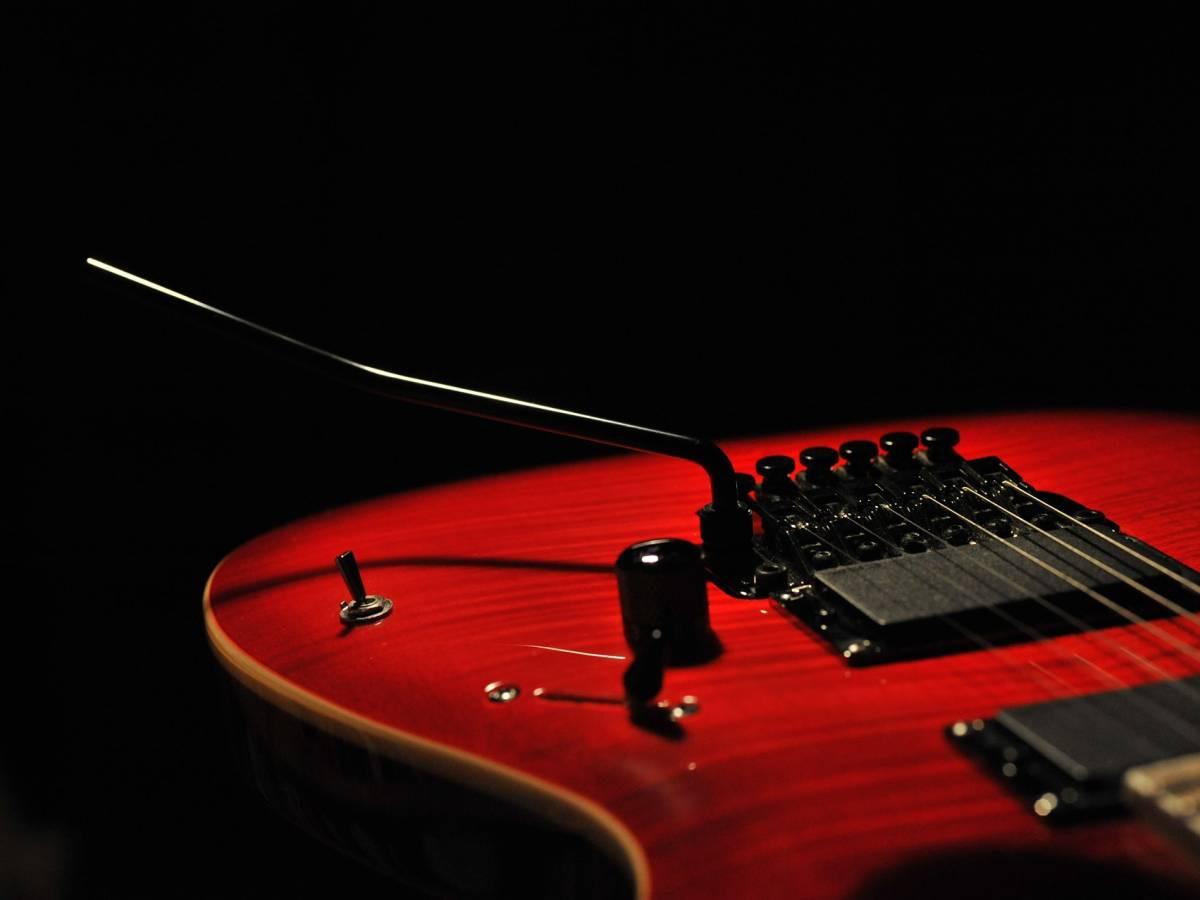 Koncert: Czerwone Gitary w Gdańsku