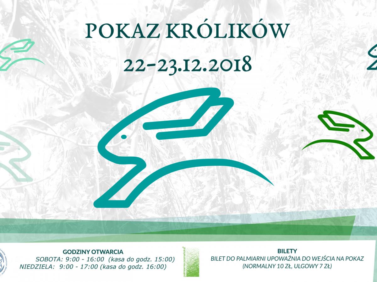 Pokaz Królików Rasowych w Palmiarni Poznańskiej