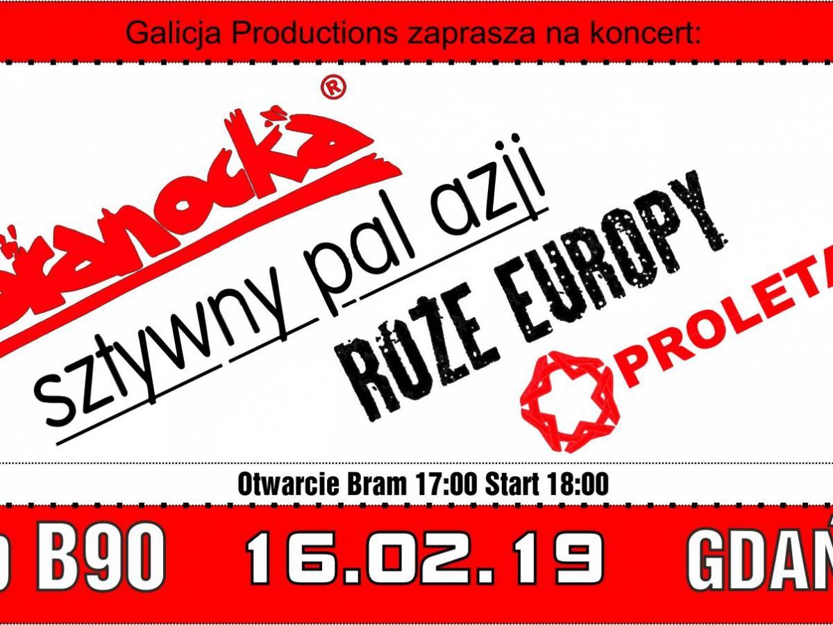 Koncert: Kobranocka, Sztywny Pal Azji, Proletaryat, Róże Europy w Gdańsku