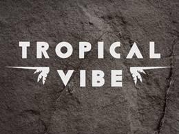 Tropical Vibe Festival - dzień 2