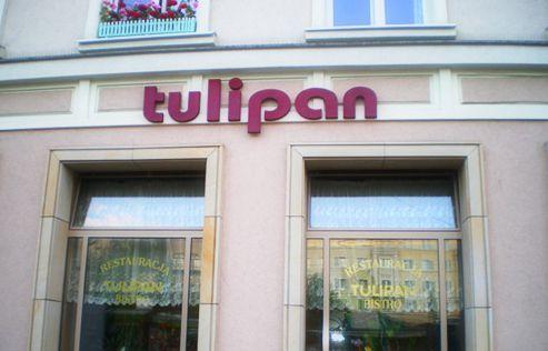 Restauracja Tulipan Poznań W Poznaniu
